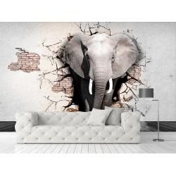 3D Fil Görseli Duvar Kumaşı